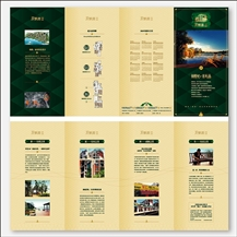 各式折页11-08